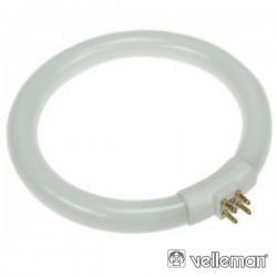 Lâmpada Circular 10W 230V p/ Vtlamp5W Velleman