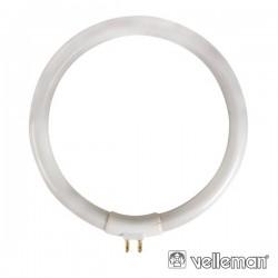 Lâmpada Circular T4 11W 230V p/ Vtlamp8 Velleman