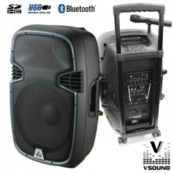 "Coluna Amplificada 15"" 600W Usb/Bt/Sd/Bat Vhf Vsound"