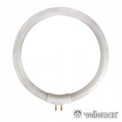 Lâmpada Circular T4 12W 230V p/ Vtlamp10 Velleman