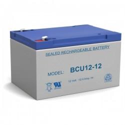 Bateria Chumbo 12V 12A
