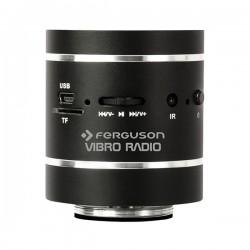 Coluna Bluetooth Portátil por Vibração 20W FERGUSON