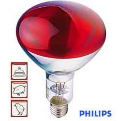 Lâmpada Infravermelhos P/ Aquecimento E27 230V 250W Vermelha - Philips