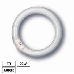 Lampada Fluorescente 22w T9 Circular