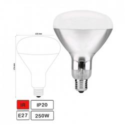Lampada Infravermelha E27 250w Topo Branco - Avide