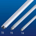 Fluorescente Linear